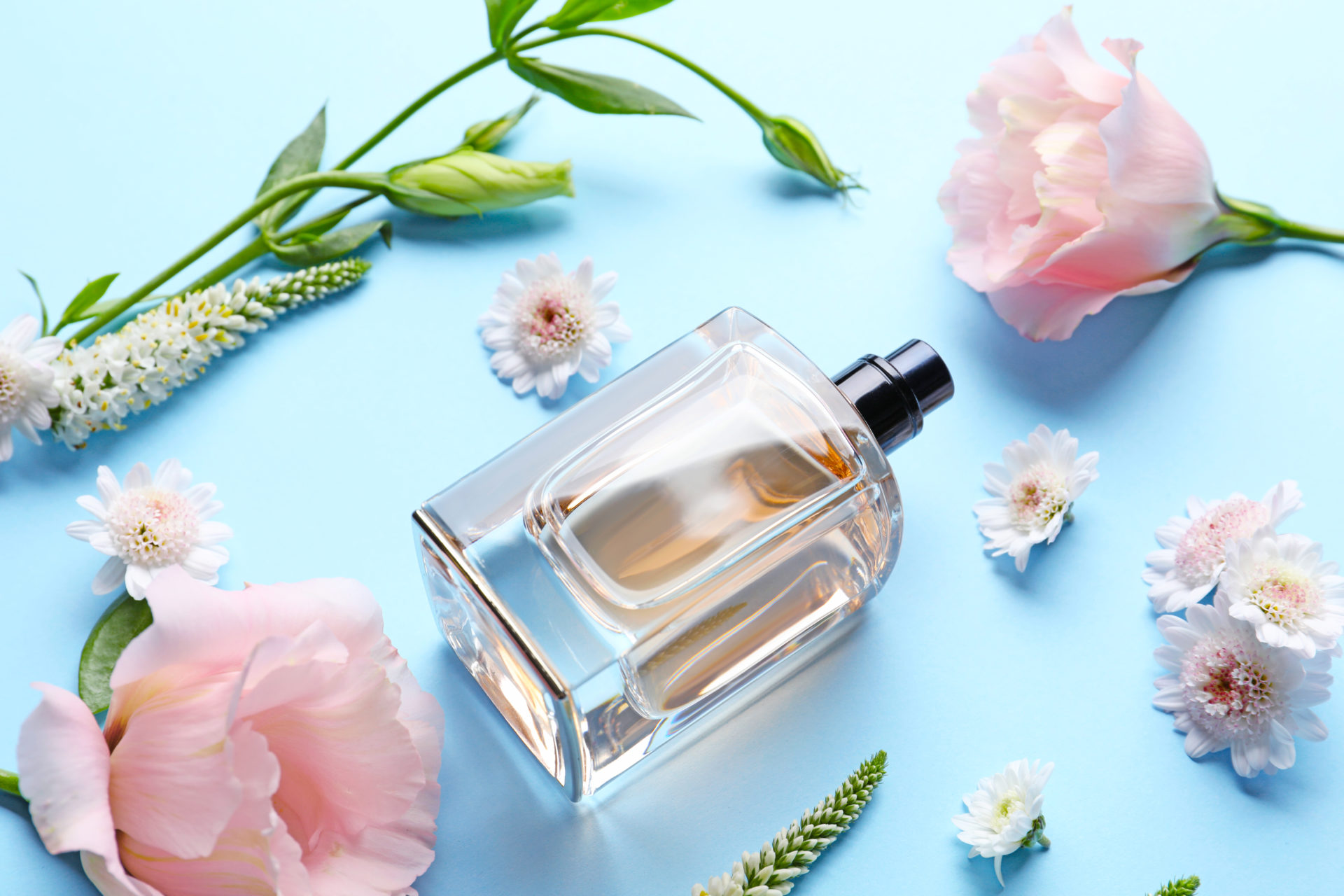 Step Into Summer With Jasmines Top 3 Classic COTY Fragrances